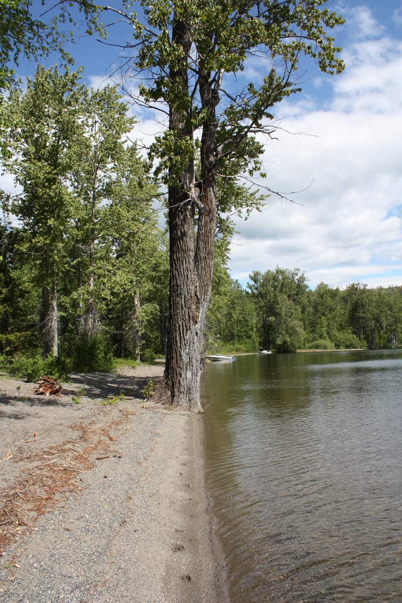 Mahood Lake