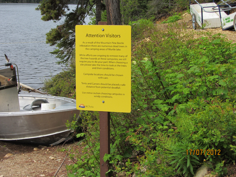 Dead tree warning sign at boat launch