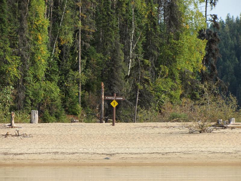 Site 1 - Murtle Lagoon North